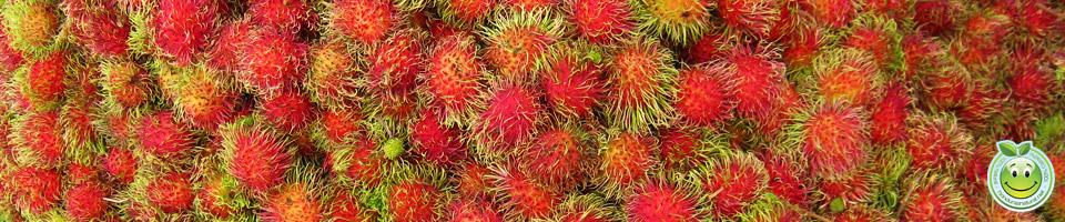 Arboles frutales de Lancetilla