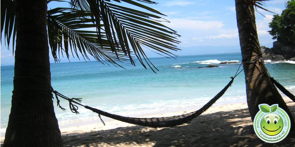 Honduras Blog Honduras hammock sea turism tropical