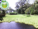 Humedales de Honduras