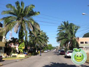 Barrio Solares Nuevos, Calle 13 La Ceiba Honduras