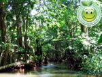 Parque Nacional Cuyamel Omoa