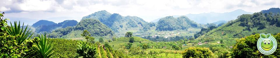 Reserva de la Biosfera del Rio Platano