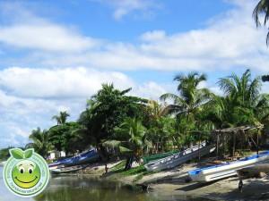 Lanchas que hacen tour a Cayos Cochinos en Sambo Creek, Honduras