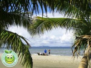 Turistas disfrutando la belleza de las playas de Tela Honduras