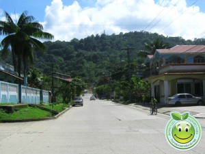 Calle Principal de Tela Honduras