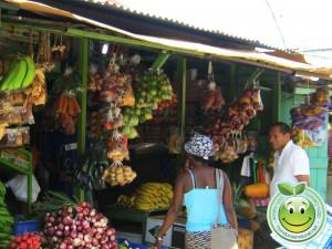 Mercado de Tela Honduras