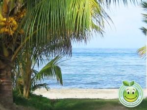 Hermosa vista de la playa de Sambo Creek, Honduras.