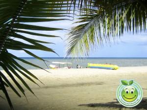 Bellas playas de Tela Honduras