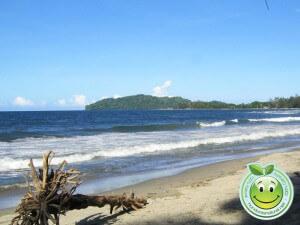 Playas de Tela y hermoso cerro Triunfo de la Cruz